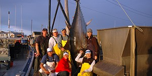 PEI Tuna Fishing Charters